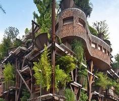 """25 verde"", architettura organica a Torino"